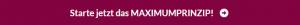 Maximumprinzip onlinekurs