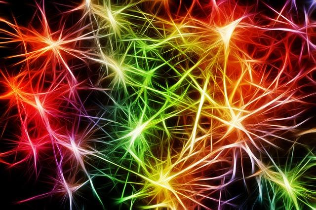 EEG und das Bewusstsein des Menschen