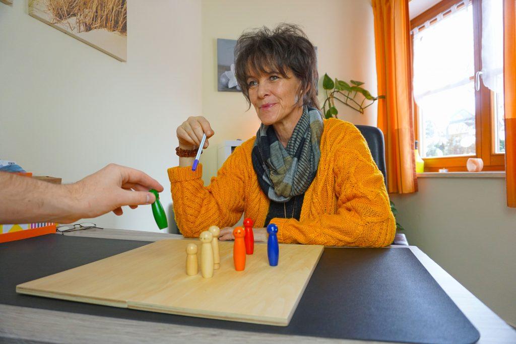 Daniela Stein, Systemische Beratung